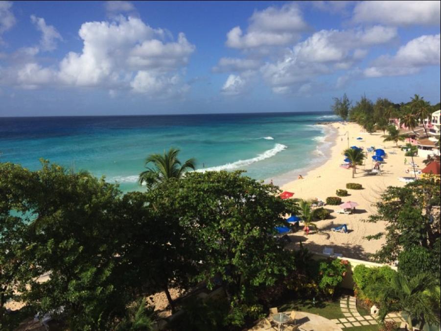 Alex in Barbados for Blog 2016 Jan